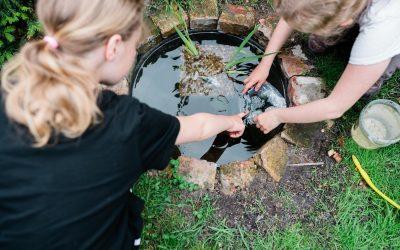 Mini-Garten-Teich