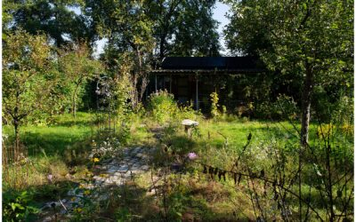 Rückblick auf die Übernahme des Gartens am 30. September 2010